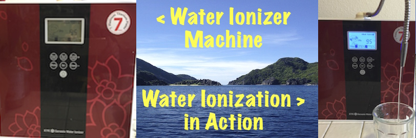 Water for Life USA Water Ionizer